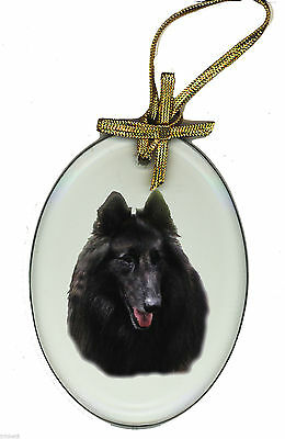BELGIAN Oval Beveled Glass Ornament Suncatcher DOG