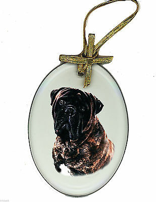 BRINDLE BULLMASTIFF Oval Beveled Glass Ornament Suncatcher DOG