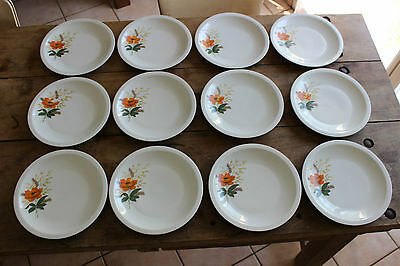 Lot de 12 assiettes plates vintage - Fleurs orange - Porcelaine du Centre