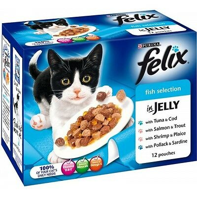 Felix Fish Variety Chunks In Jelly Cat Food 12 x 100g x 2