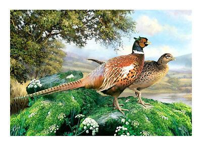 Tuftop Pheasants Bird Worktop Saver Protect Chopping Board Trivet 40x30cm Glass