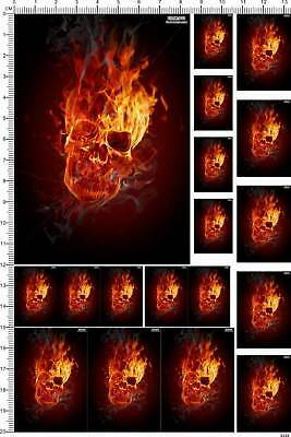 decals fire flame Skull for different scales (5220)