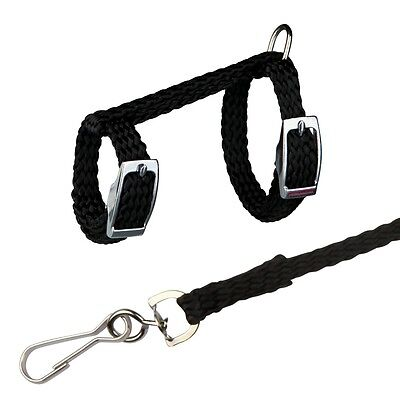 Black Nylon Harness & Lead Set for Rats & Ferrets 1.25 Meter Detachable Leash