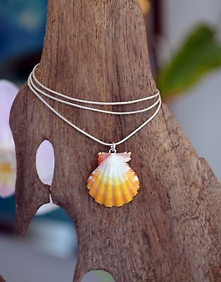 Sunny Yellow Hawaiian Sunrise Shell (Pecten Langfordi) on White Pearl & Silver