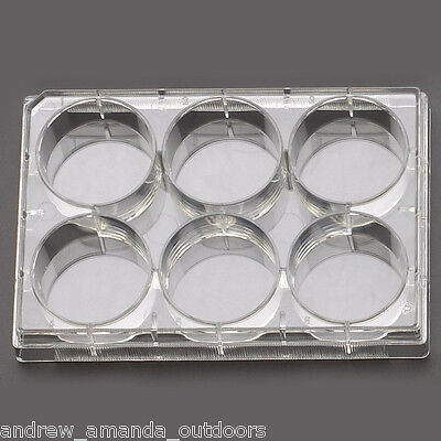 6 Well Cell Culture Plate,Flat,Non-Treated, sterile 1/pk, 50/cs   703011