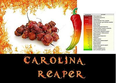 Carolina Reaper Dried Chilli Pods hot pepper - Hottest Peppers In The World