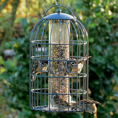 EXTRA LARGE SEED FEEDER The Nuttery Grey Wild Bird FREE Hanger | Squirrel Proof!