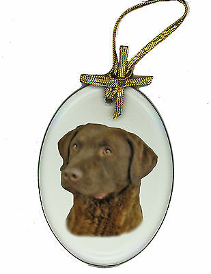CHESAPEAKE BAY RETRIEVER Oval Glass Ornament Suncatcher DOG