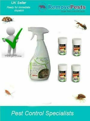 Flea Fleas Killer Bomb poison room treatment  with spray HSE Approved 4 pack IN