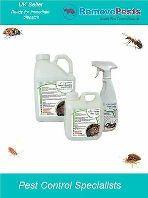 bed bug bedbugs ready to use organic insect pest killer control safe spray