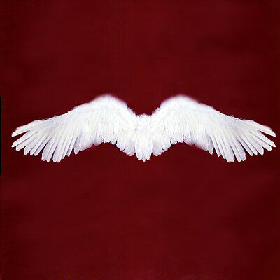 White Feather Angel Halloween costume Wings Large Adult Teenager cosplay fairy L