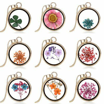 Natural Real Dried Flower Shining Resin Round Glass Locket Pendant Necklace New