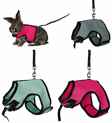 Large Rabbit Full Body Soft Padded Harness & Elasticated Leash Various Colours