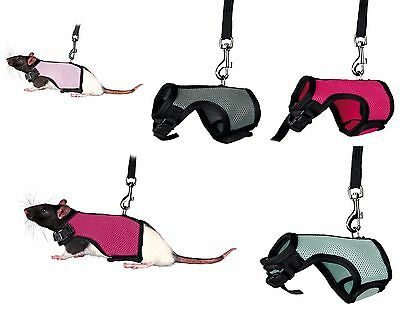 Rat Full Body Soft Padded Harness & Elasticated Leash Various Colours