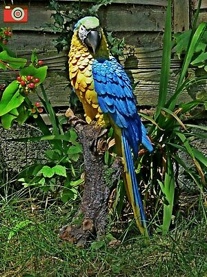 LARGE SIZE MACAW FIGURE. Very Realistic, Nice Home / Garden Ornament Vivid Arts