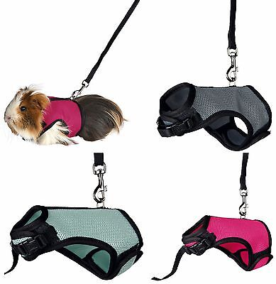 Guinea Pig Harness Full Body Adjustable Harness & Lead Set Various Colours