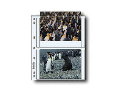 """Print File Archival Photo Pages Holds Four 5 x 7"""" Prints, Pack of 25"""