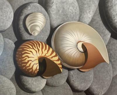Shell Canvas Painting