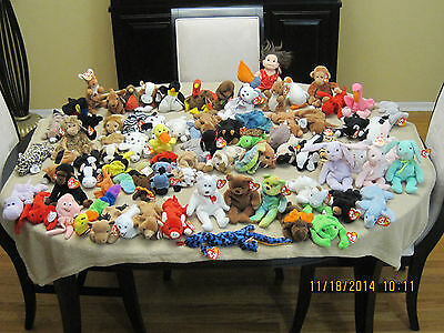A Classic Collection of TY Original Beanie Baby Toys