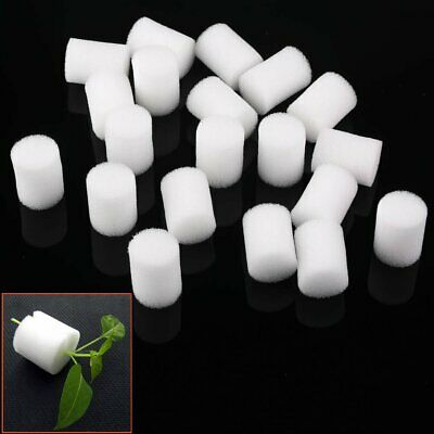 10-20pcs White Clone Cloning Collar Foam Insert Hydroponic Root Guard Mesh Pot