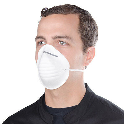 10 Disposable Nuisance Dust Mask Molded Cleaning Face Safety Clean Cone Masks