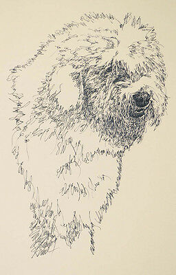 Old English Sheepdog Signed Art Dog Lithograph #90 Kline DRAWING FROM WORDS oes