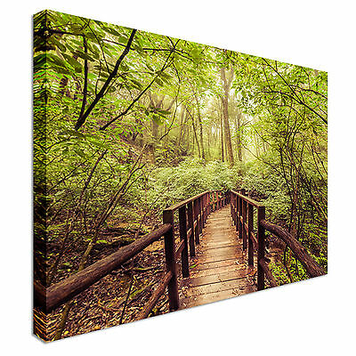 Jungle Path Canvas wall Art prints high quality great value