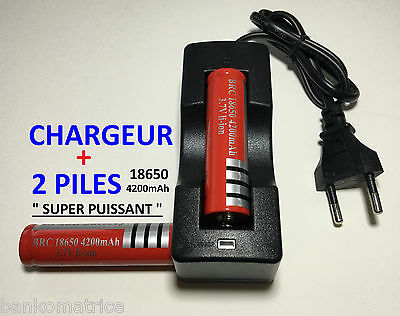Chargeur + 2 Battery 18650 Protected Li-ion 4200Mah 3.7V Accu