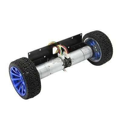 Self-Balancing Motor Car 2WD Metal Smart Car Chassis Balance Base w/ Encoder