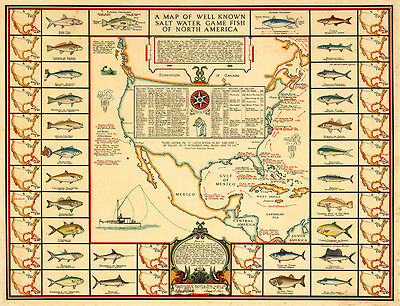 Map of Well Known Salt Water Game Fish of North America 75cm x 57.4cm Art Print