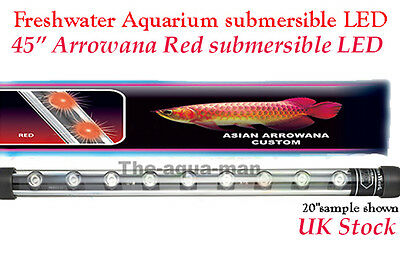 Aquarium Fully Submersible Power Asian Red Arowana Enhancement - 114 cm / 45""