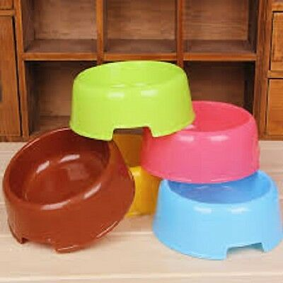 Single Pet Bowl - Plastic - Ideal For Cats And Small Dogs - Small Animals