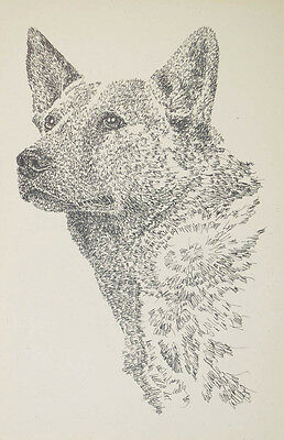 AUSTRALIAN CATTLE DOG ART #38 Signed Kline Word Drawing. Dogs name added free.