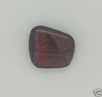 AMMOLITE 3,06 Ct. MULTICOLOR 11,0 X 10,0 MM