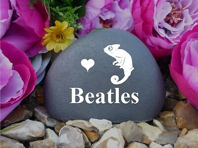 Pet Chameleon Memorial Pebble (Stone Effect) Weatherproof & Personalised (FS)
