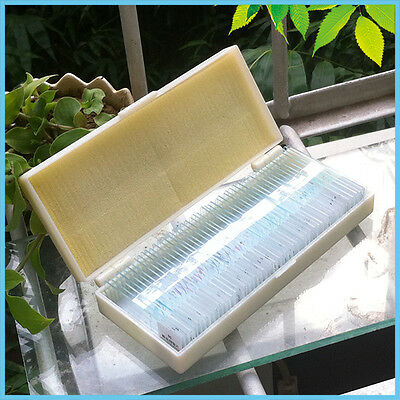Biological Microscope Glass Prepared Slides Specimen w/ Box 50 PCS Professional