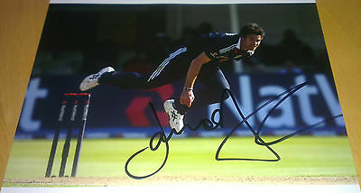 Jimmy Anderson signed England Cricket Photograph