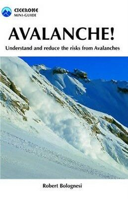 Avalanche!: Understand and Reduce Risks from Avalanches 9781852844738, Bolognesi