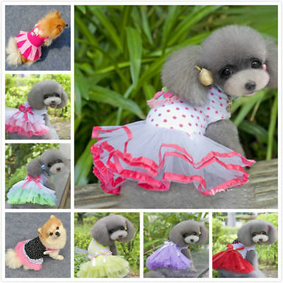 2016 Lovely  Princess Lace Dress For Pet Puppy Small Dog Dress Apparel Clothes