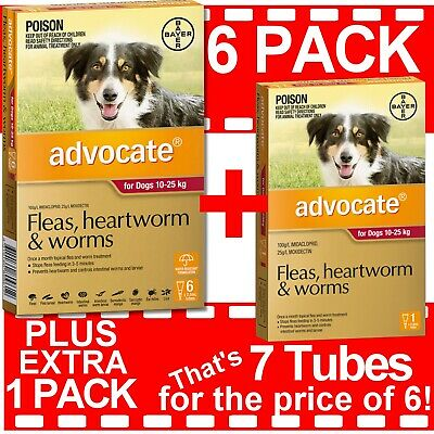Advocate for Dogs 10-25kg 6 PACK PLUS EXTRA 1 PACK **Lowest Price per Tube**