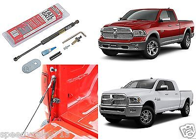Dee Zee DZ43301 Tailgate Assist Shock For 2009-2018 Dodge RAM New Free Shipping