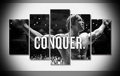 6674 Conquer Arnold Schwarzenegger Muscle Poster framed art print stretched NEW