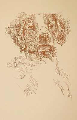 Brittany Spaniel Dog Art Portrait Print 78 Kline adds dog name free WORD DRAWING