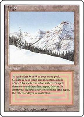TAIGA Revised Edition MTG Land — Mountain Forest RARE