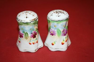 Pair Hand Painted Ceramic Salt & Pepper Shakers w/ Floral Images - Made in Japan
