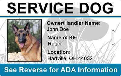 Set of 2 Top-Rated Service Dog ID Tags - customized w/ your working dog's info.