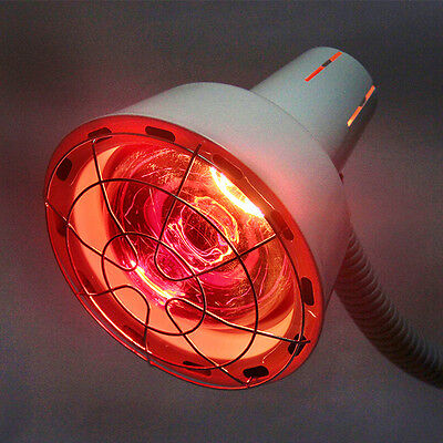 TDP Heat Mineral Lamp Far Infrared Circulation Pain Relif Heating Therapy Light