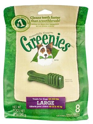 Greenies [New] Daily Dental Chews for Large Dogs (8 count)