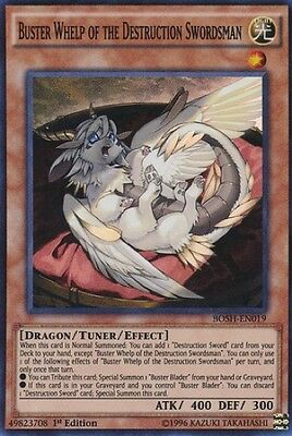 Buster Whelp of the Destruction Swordsman (BOSH-EN019) - Super Rare - 1st Ed.