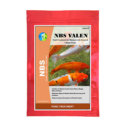 Clear Pond/Lake Silt, Sludge, Slime Deposits, Odour, Green Water- NBS VALEN 1 KG